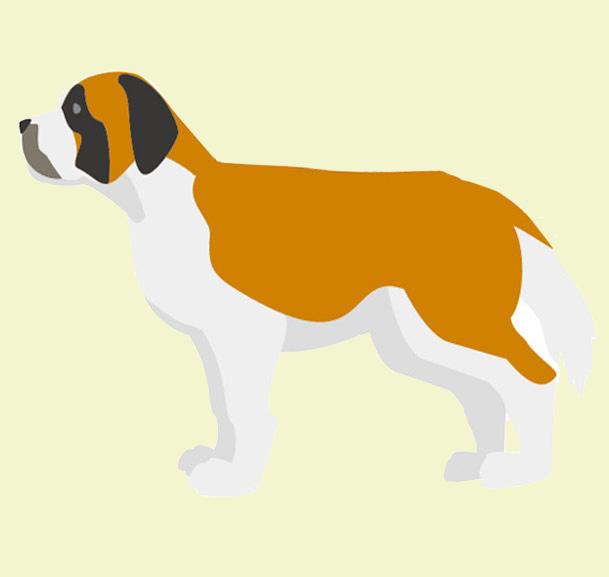 バーナード・グレートピレニーズ等の特大型犬